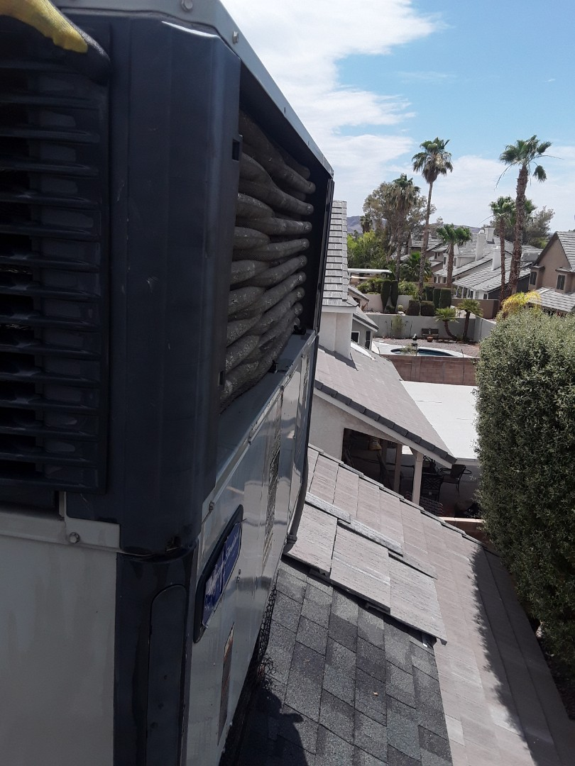 Henderson, NV - American Standard coil cleaning in Henderson