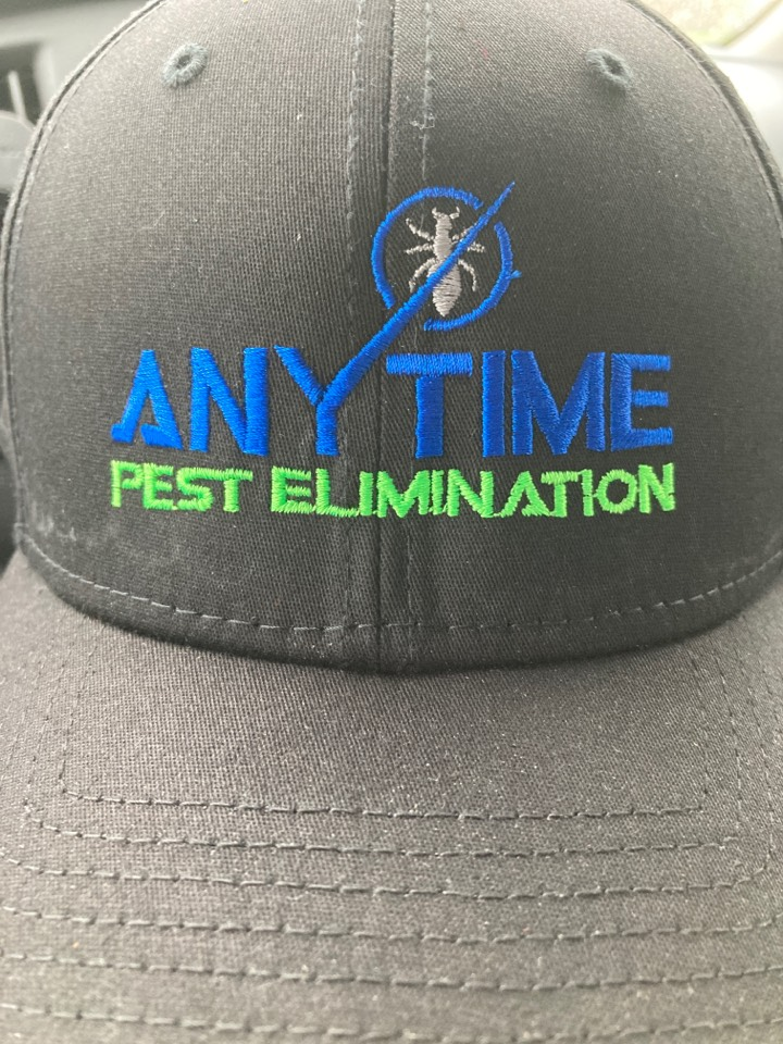 Treating interior and exterior of home for spiders and general pests.