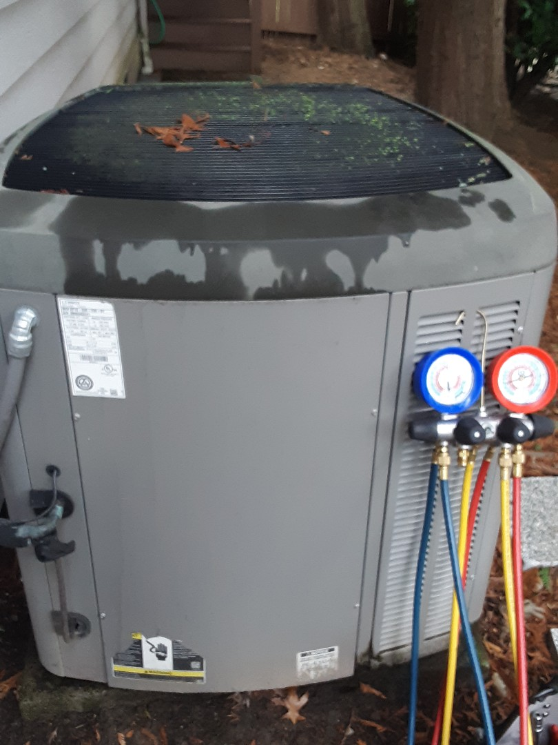 Mukilteo, WA - Tune-up on a Lennox heat pump and carrier gas furnace in Mukilteo