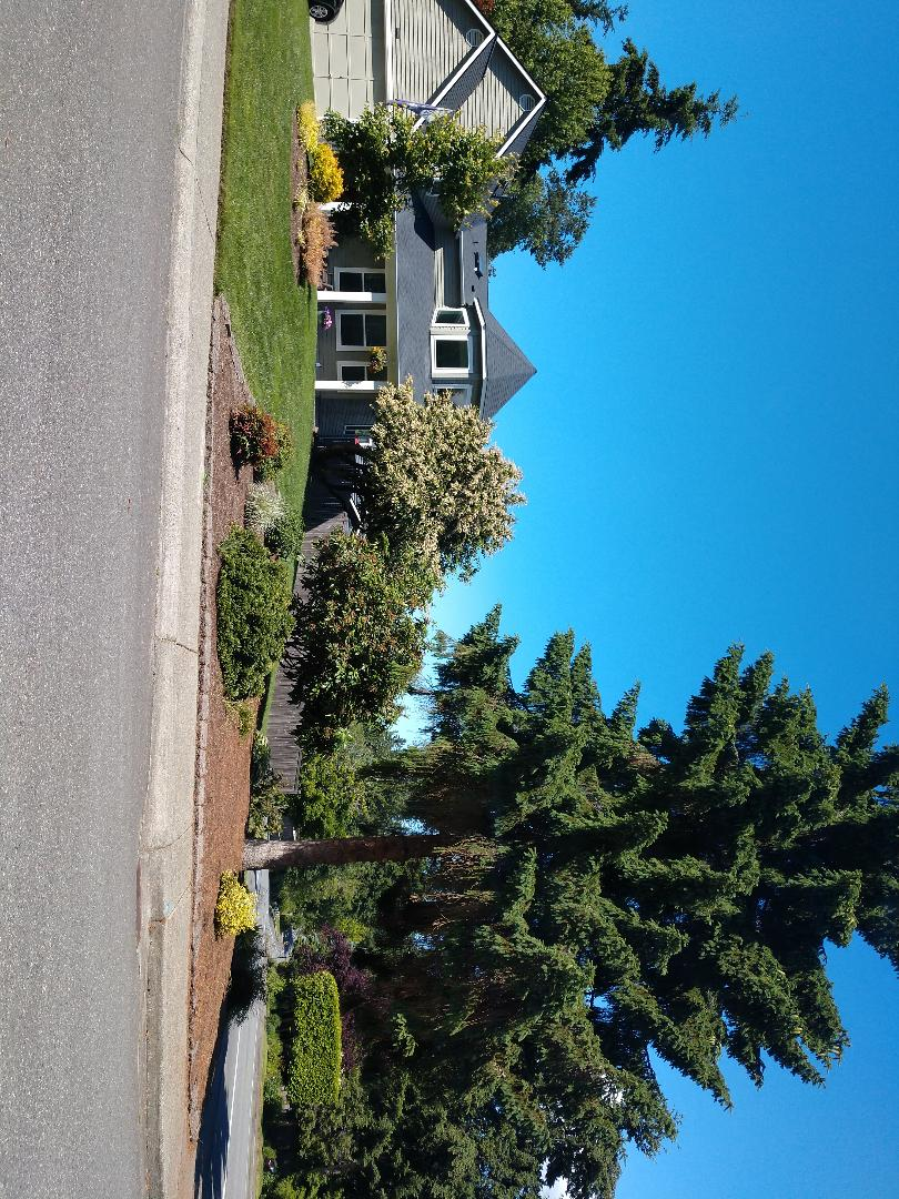 Brier, WA - Quote for a brand new Lennox air conditioner. Today is a great day for it! ??