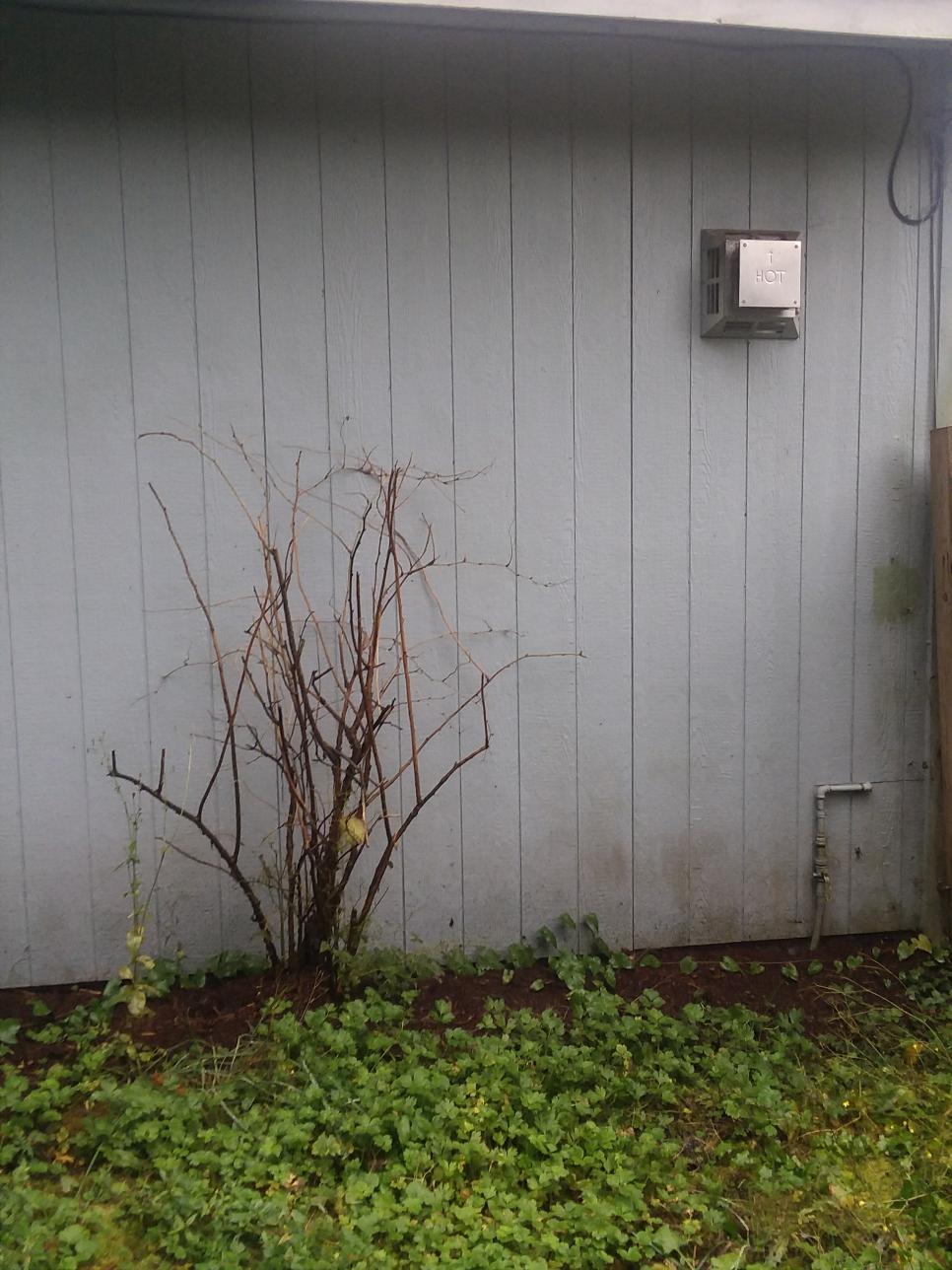 Installation of a Mitsubishi ductless heat pump system in Granite Falls Washington