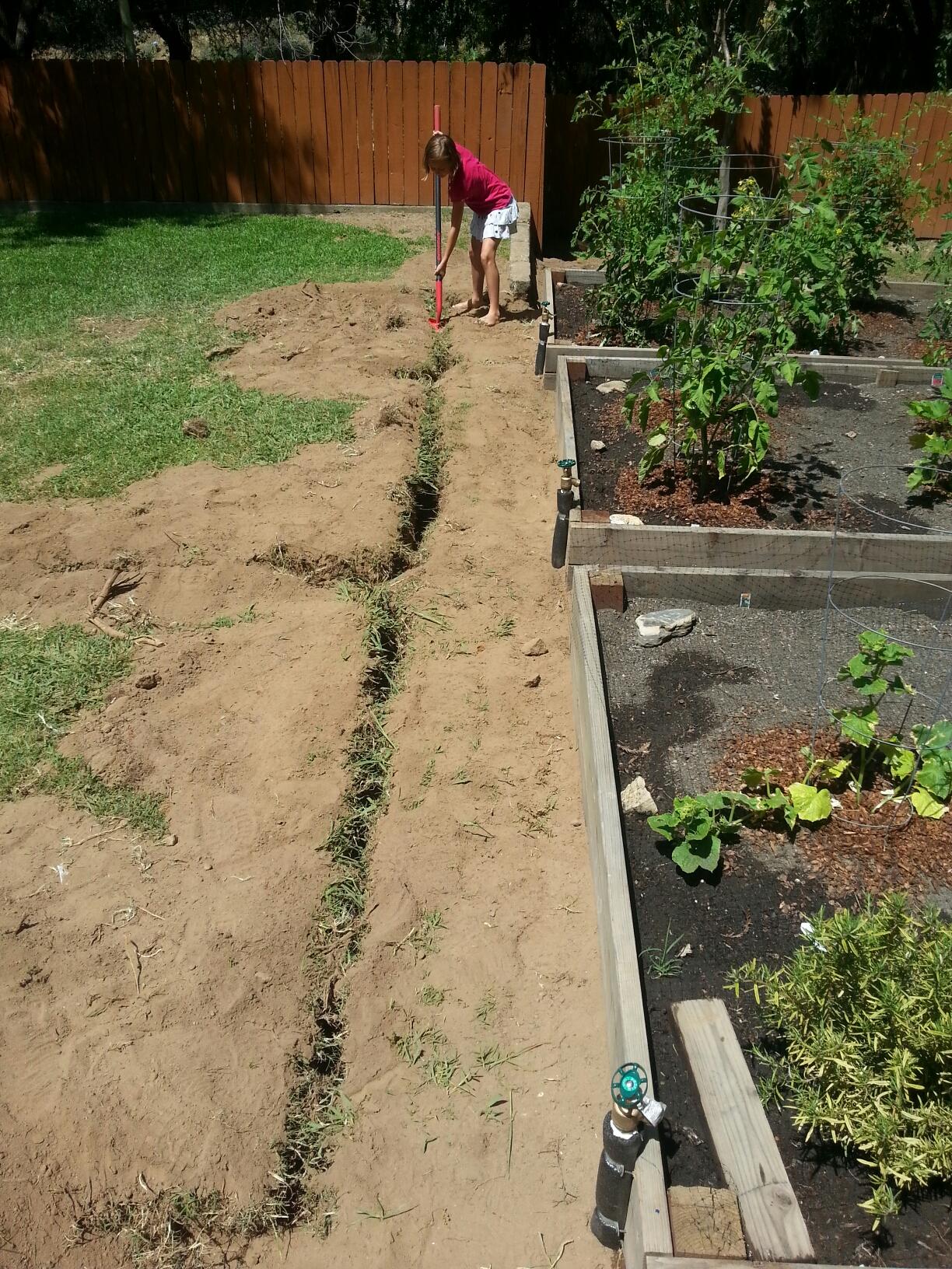 Fair Oaks, CA - Fair Oaks plumbing repair installation of 6 new hose bibs and 250 feet of new irrigation line
