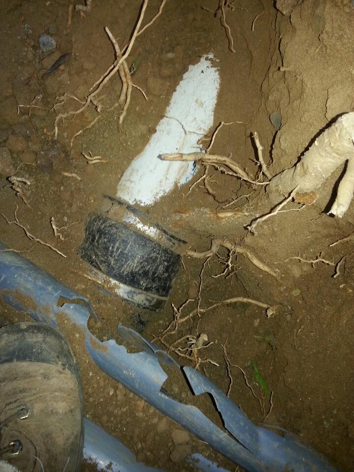 Orangevale, CA - Folsom sewer line repair roots in system