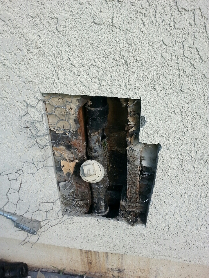 Penryn, CA - Penryn Rat damage kitchen line in wall waste cleanup and repair
