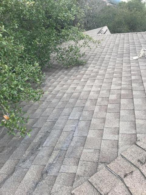 Georgetown, TX - Roof Repair Tree Damage Active Leak Cracked shingles Georgetown Texas