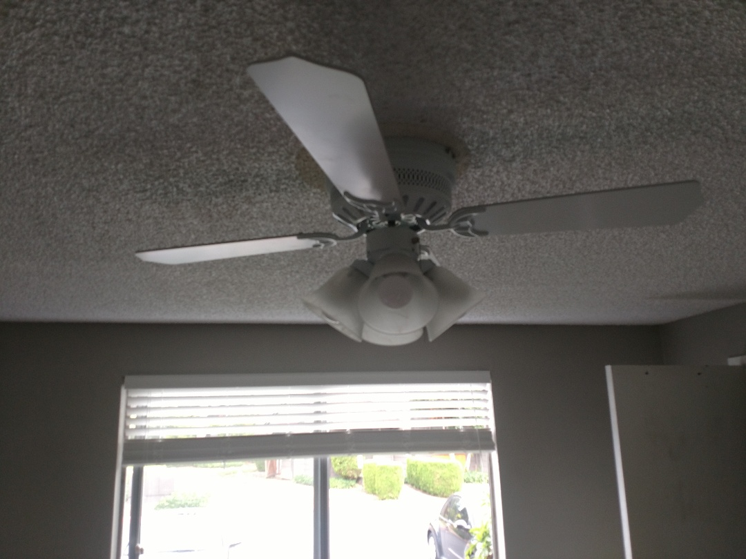 Tacoma, WA - Installed a paddle fan in the bedroom.