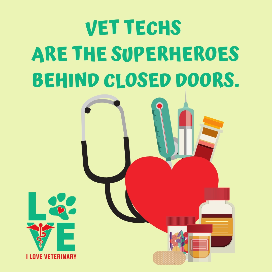 It is National Veterinary Technician Week! We thank all of our technicians for the hard work they put in each and every day to care for all of our patients.