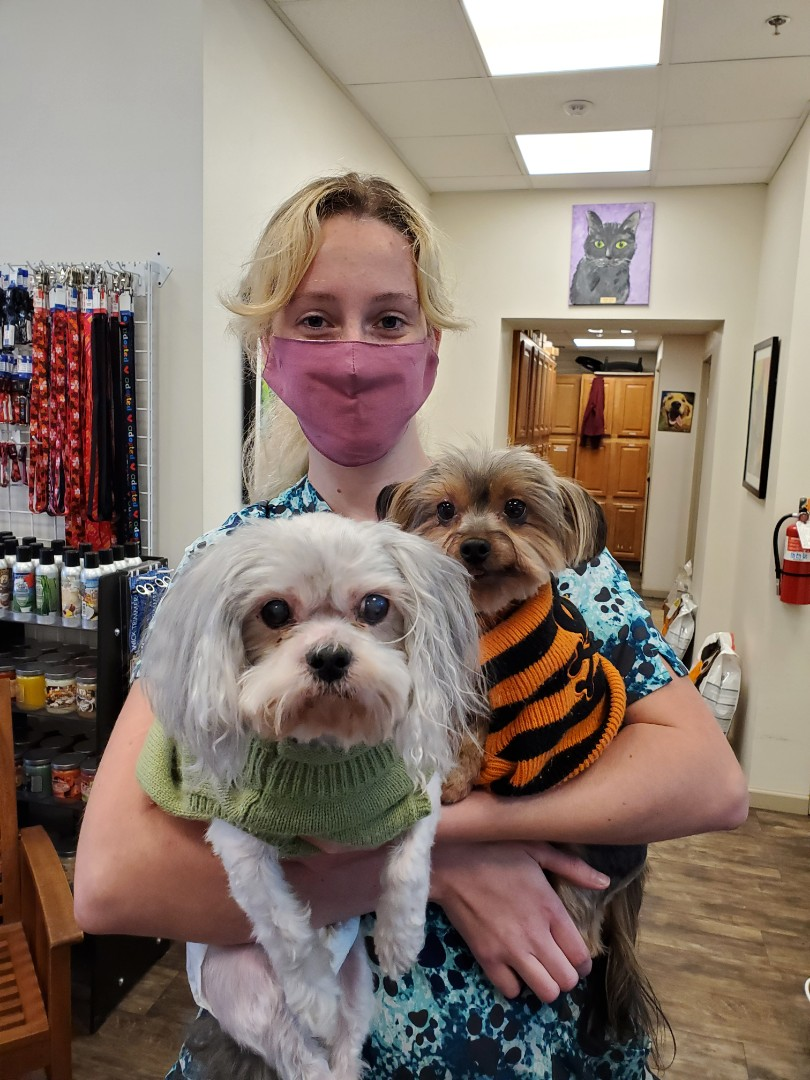 Is it sweater weather yet? These cute pups came to our pet boarding here in Pensacola.