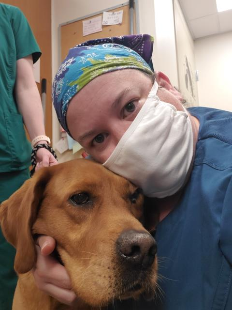Sweet Willie came in to get checked for heartworm disease-related issues.  He was coughing and panting more than normal.  He was the best boy and laid perfectly still for his x-rays!  We wish all of our patients were this calm!  We hope he has a speedy recovery!  If your dog has signs of heartworm disease in Pensacola, come to our Animal Hospital!