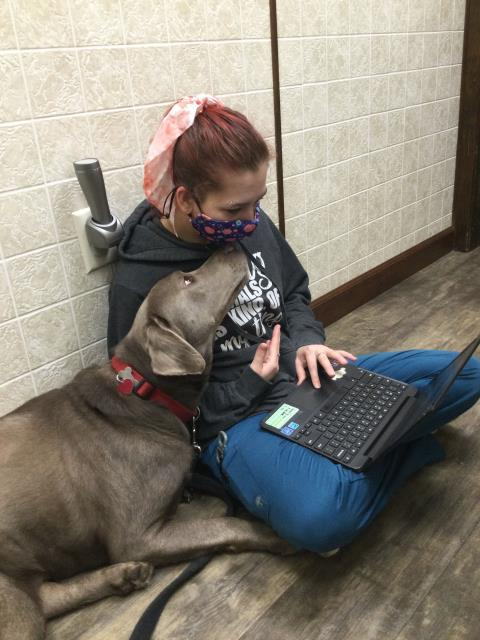 Deanna has company while getting her chart updated for Jax.  Jax came in to the Pensacola animal hospital for annual vaccinations and to check ears.