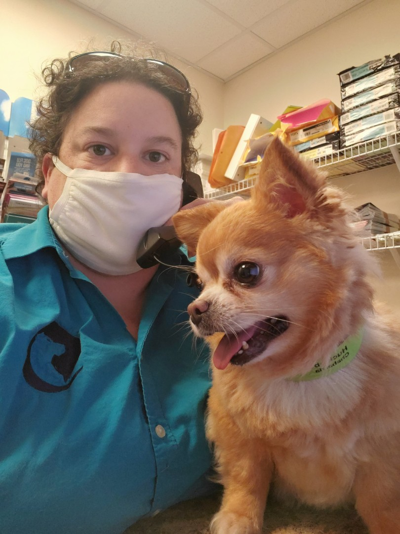 Huckleberry and I are ready to answer your calls here at Davis Animal Hospital! This sweet pomeranian had his doggy vaccinations updated and he's doing great.
