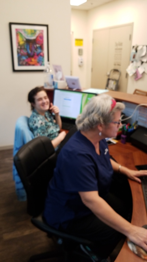 Working hard here at Davis Animal Hospital, nothing but the best for your pets!