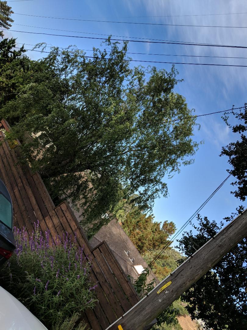 Oakland, CA - HVAC, solar estimate