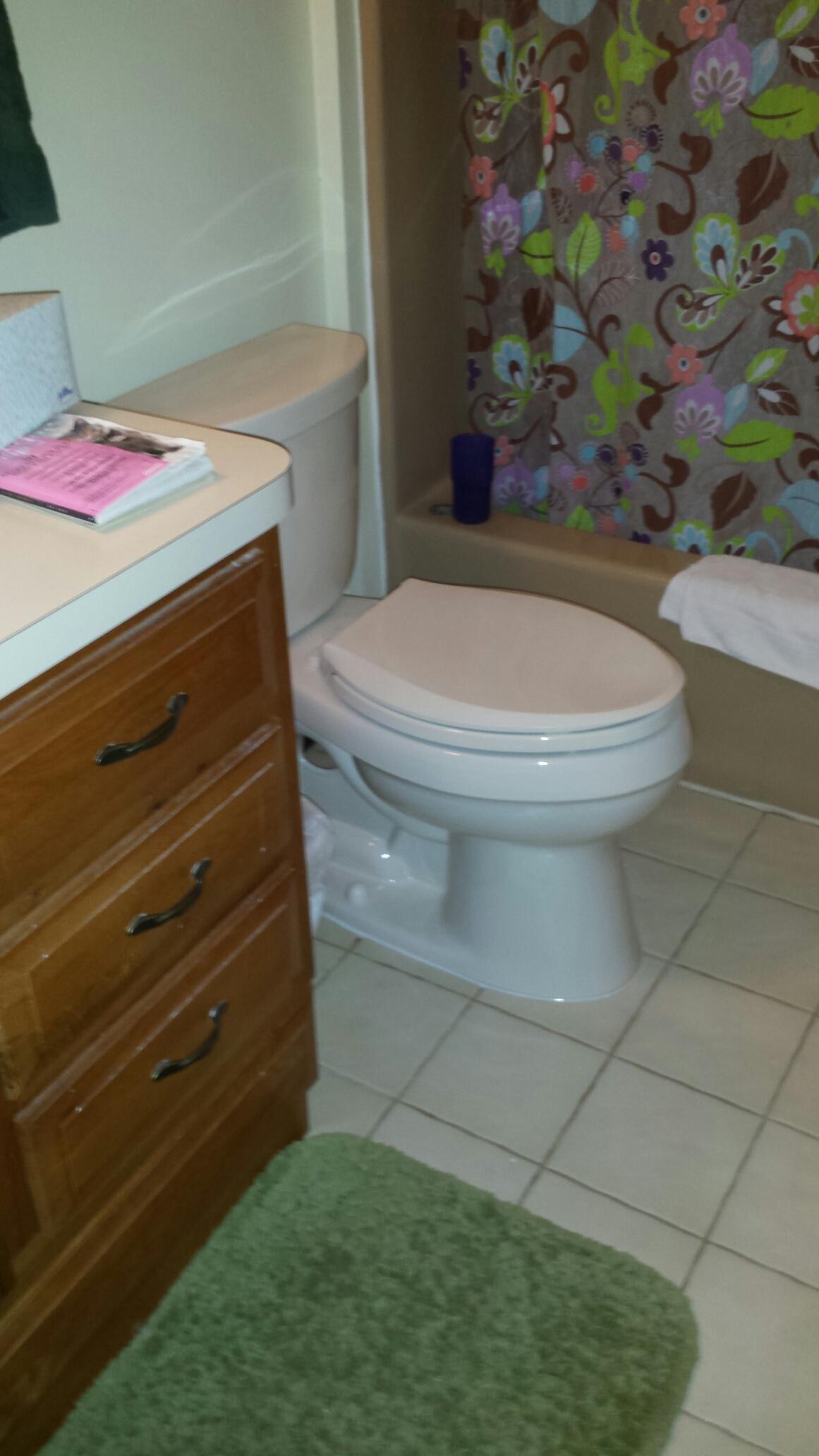 Garden City, MI - Pull/Reset toileSnake drain line