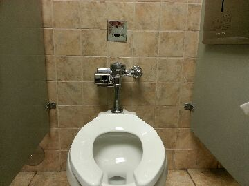 Rochester, MI - toilet/ automatic flush Sloan valve