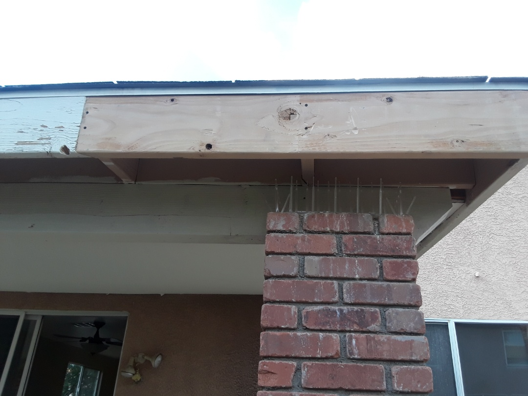 Las Vegas, NV - Painting fascia on the patio cover rebuilding a toilet adjusting and replacing wheels on a patio sliding door