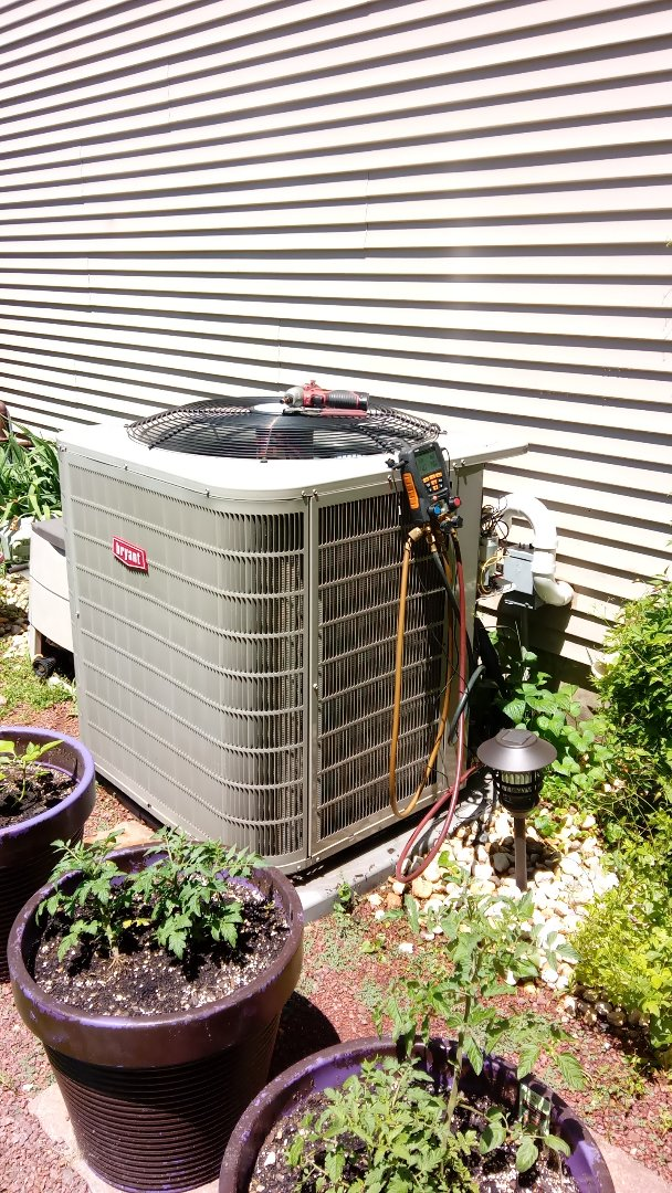 West Dundee, IL - Starting manufacturer recommended annual maintenance on Bryant air conditioner