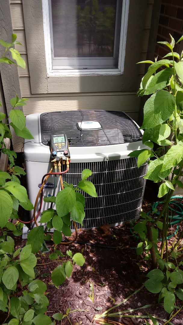 St. Charles, IL - Starting manufacturer recommended annual maintenance on 12 year old Carrier air conditioner