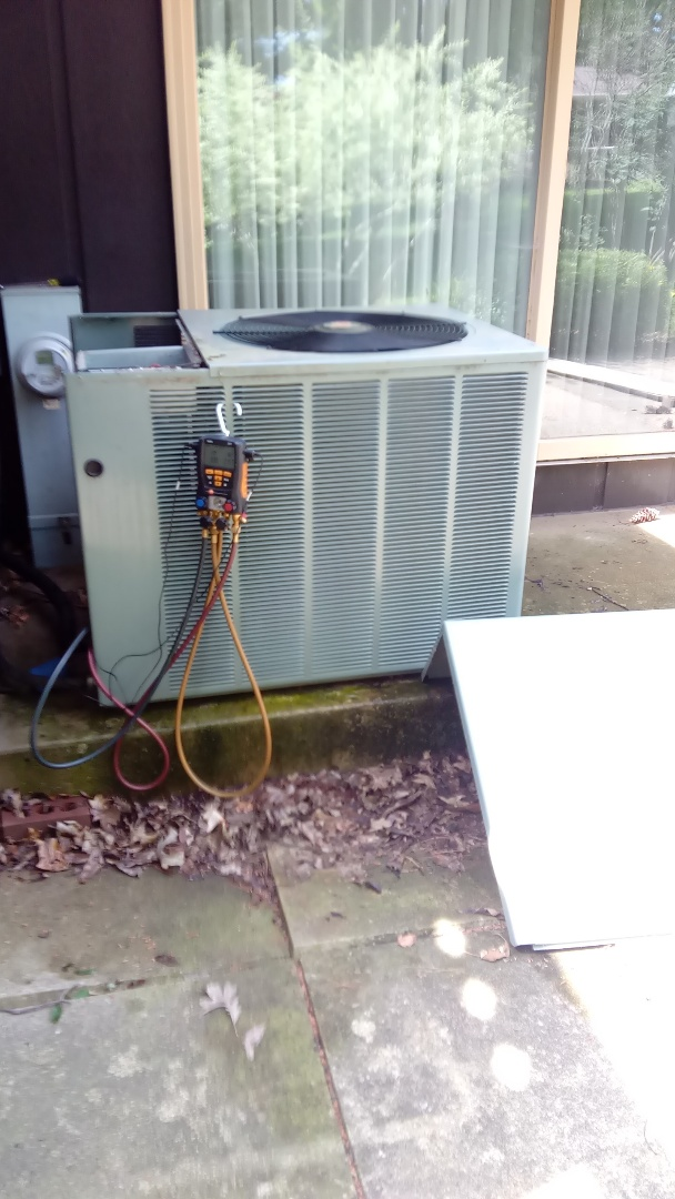 Sleepy Hollow, IL - Starting manufacturer recommended annual maintenance on 11 year old Rheem air conditioner