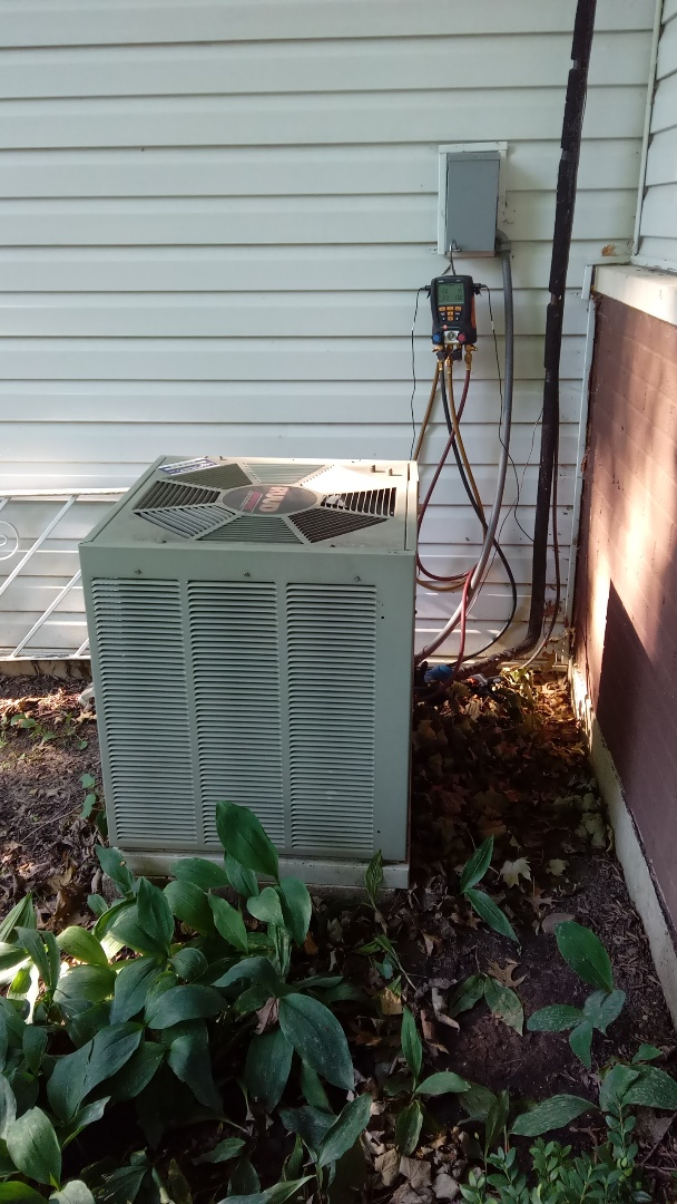 Hoffman Estates, IL - Starting manufacturer recommended annual maintenance on RUDD Air Conditioner