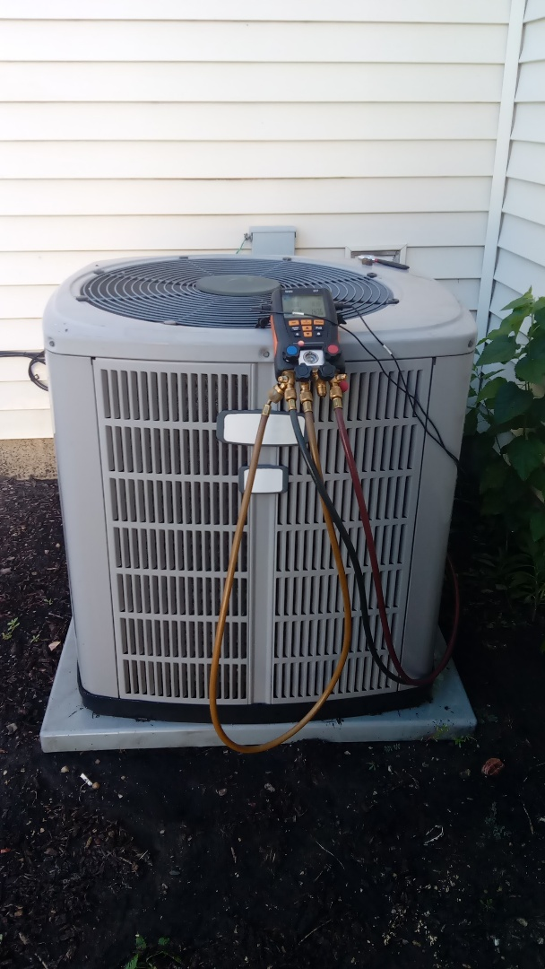 Elgin, IL - Starting manufacturer recommended annual maintenance on 12 year old  American Standard Air Conditioner