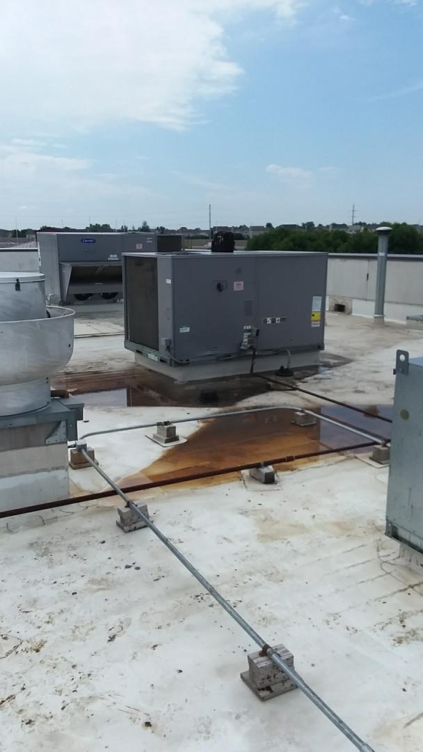 Hoffman Estates, IL - Starting rooftop maintenance on Carrier rooftop units for Saddle Room Hoffman Estates