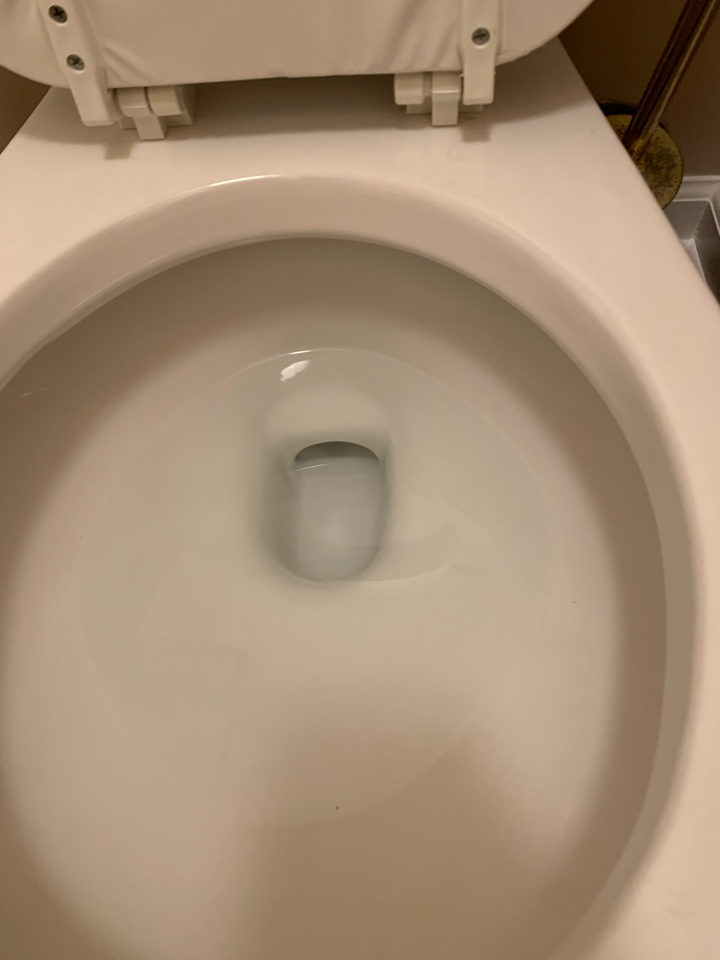 A plumber near me in Douglasville, GA was able to make sure a toilet was working fine