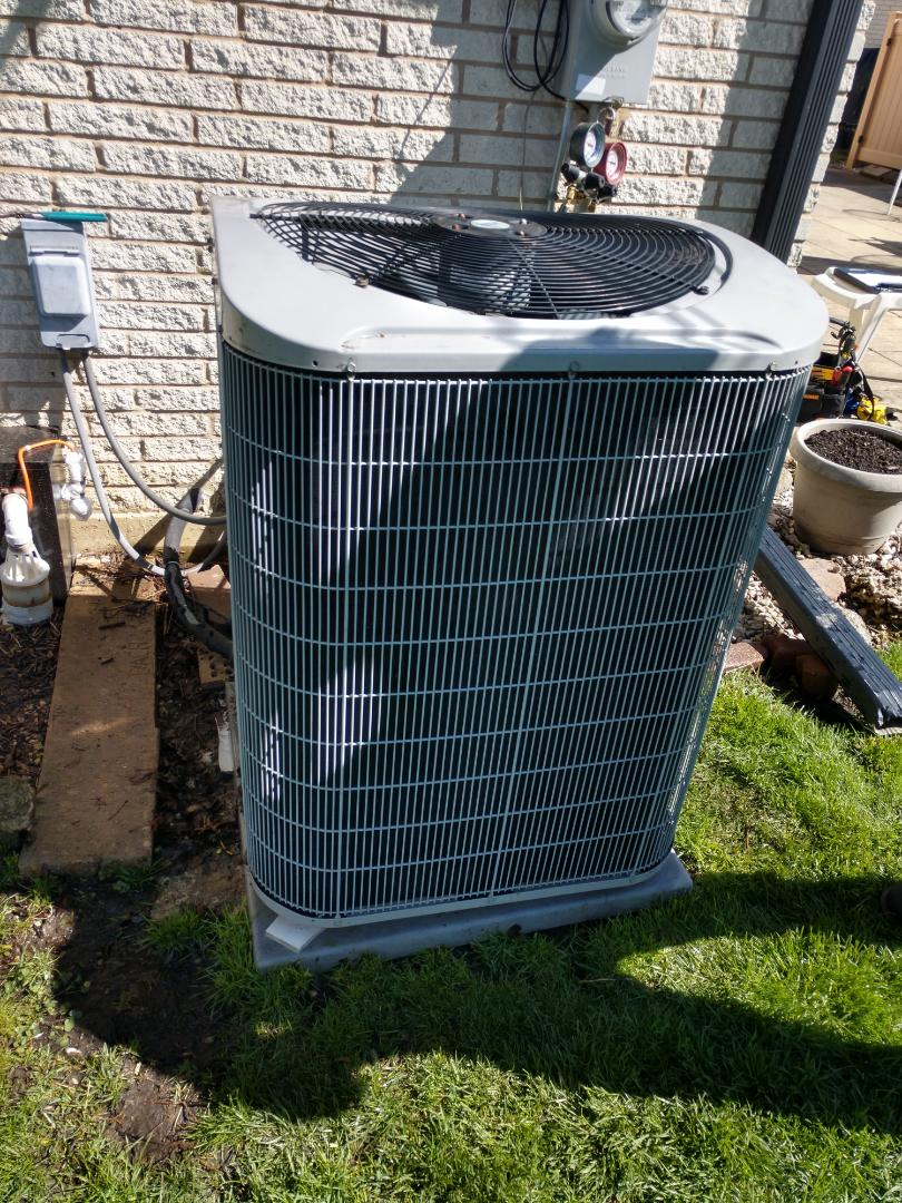 Mount Prospect, IL - We performed annual AC  maintenance on a Carrier condenser