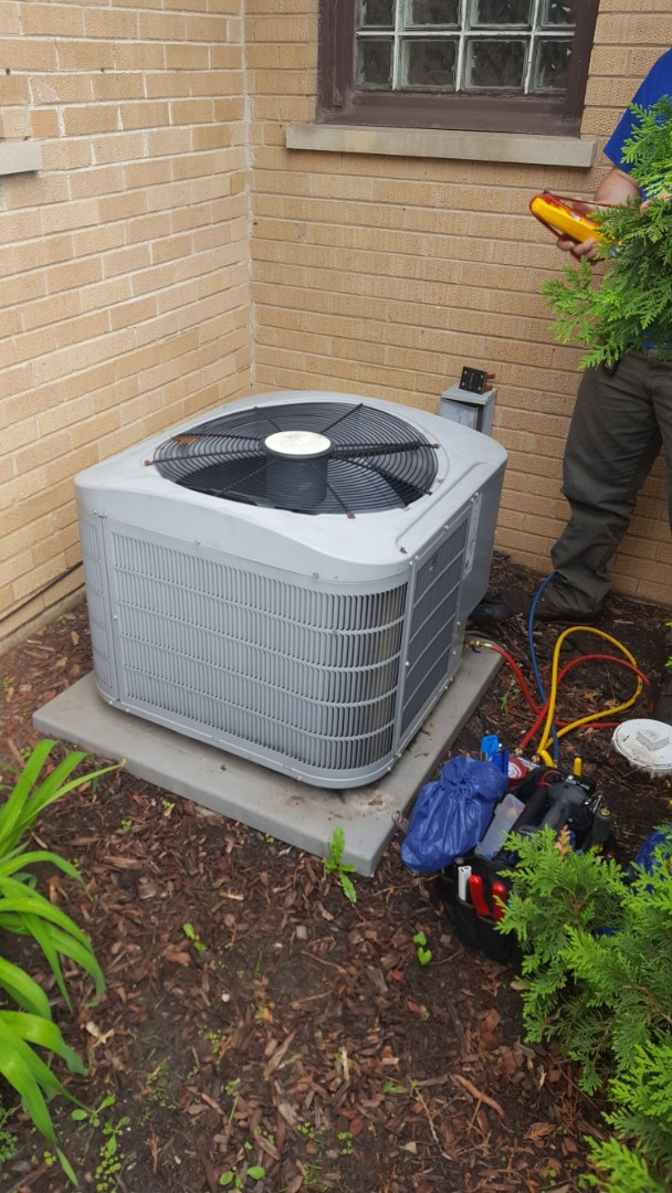 Mount Prospect, IL - Performed A.C. cleaning on Carrier air conditioner. AC maintenance in Mt Prospect. Replace Aprilaire 810 filter.