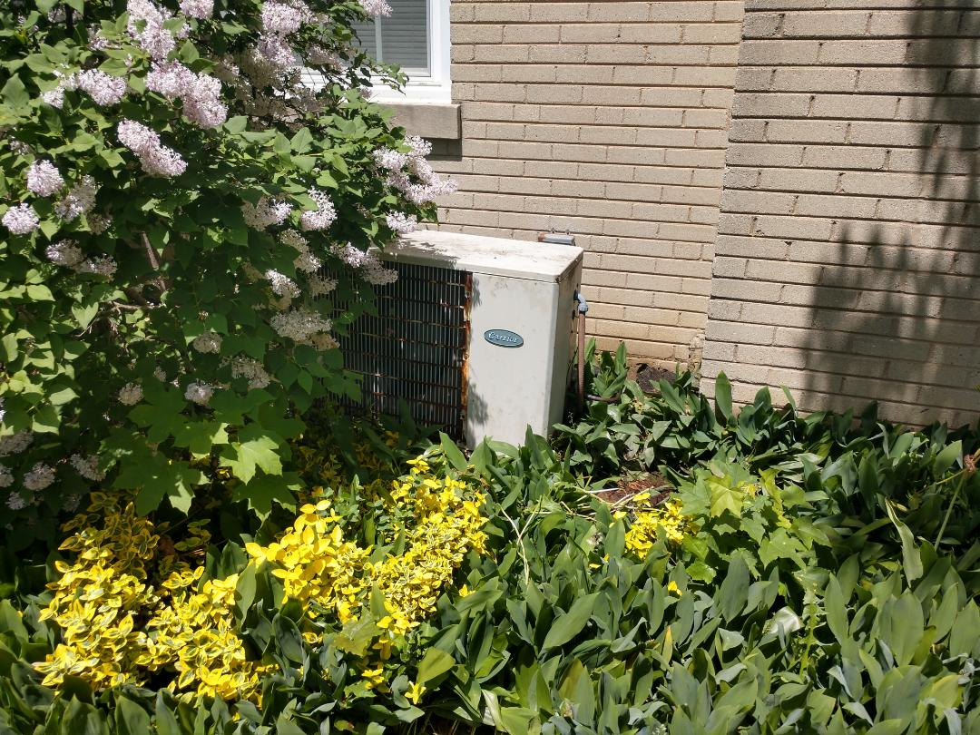 Arlington Heights, IL - Ac cleaning.. we performed maintenance on a Carrier air conditioner