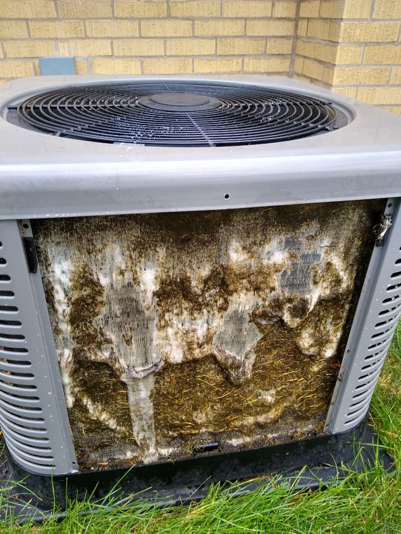 Mount Prospect, IL - Ruud Air conditioner preventive maintenance and tune up. Replaced aprilaire 600 humidifier pad and and blew out condensate trap. Cleaned condenser and checked refrigerant and electrical components.