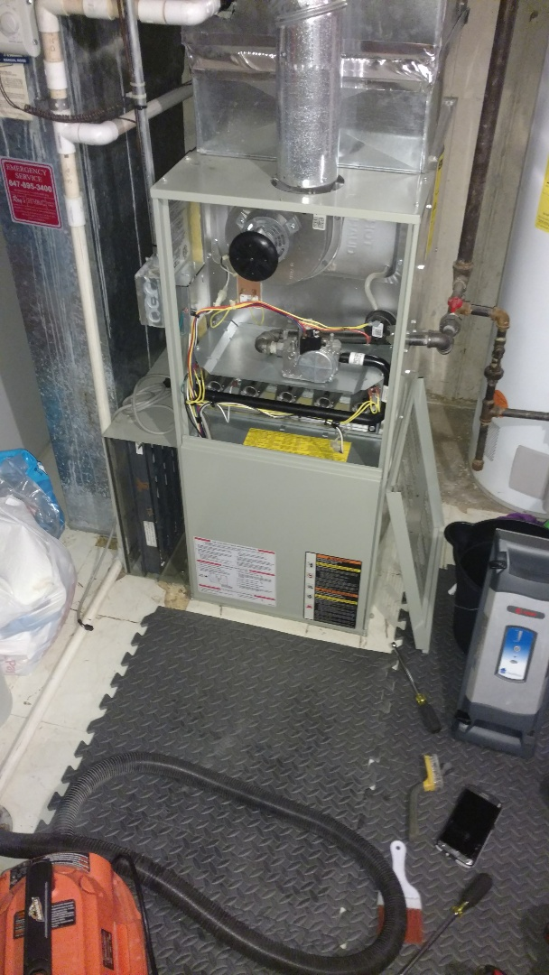 Schaumburg, IL - Furnace maintenance call. Performed furnace maintenance on Trane unit.