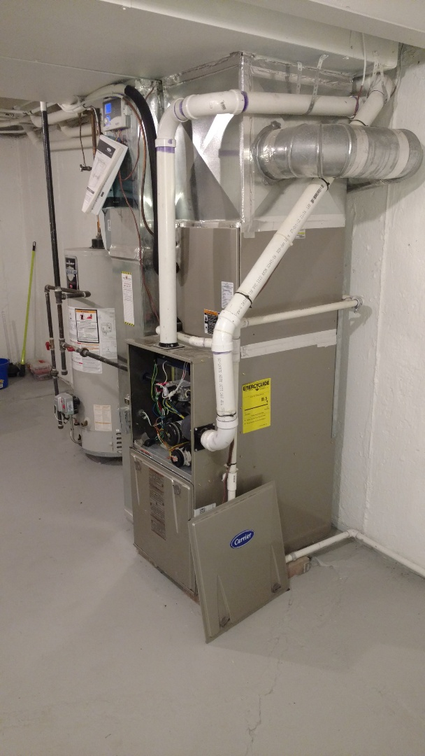 Mount Prospect, IL - Furnace maintenance call. performed furnace maintenance on carrier unit.