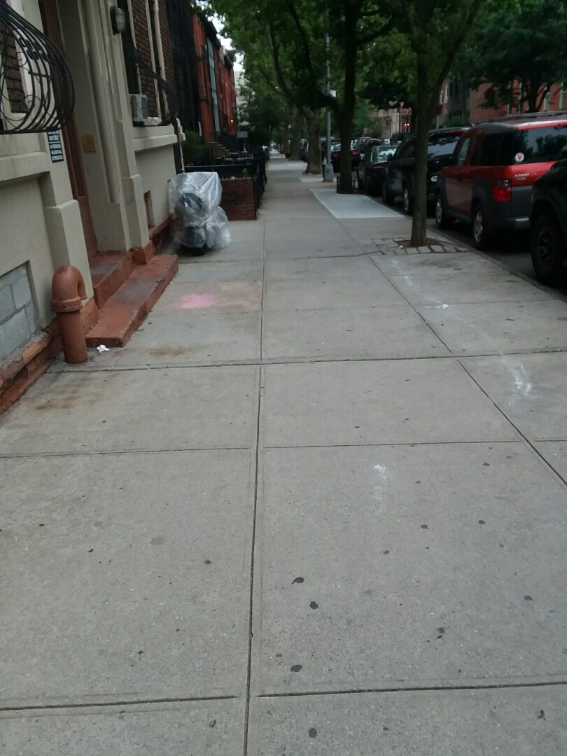Brooklyn, NY - General pest service