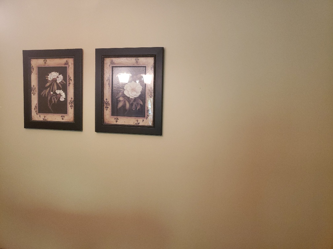 Carmel, IN - Painted walls golden brown to compliment picture frames. Product used was highrise eggshells from ppg paints.