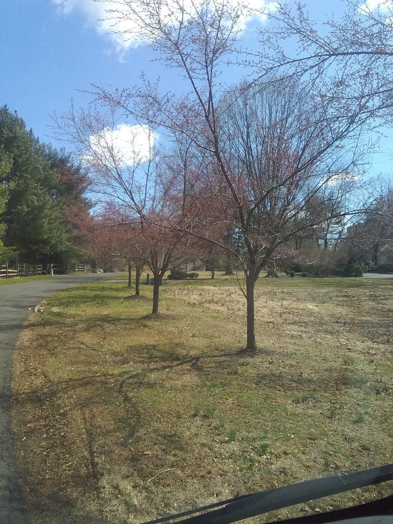Harding Township, NJ - Turning irrigation systems on