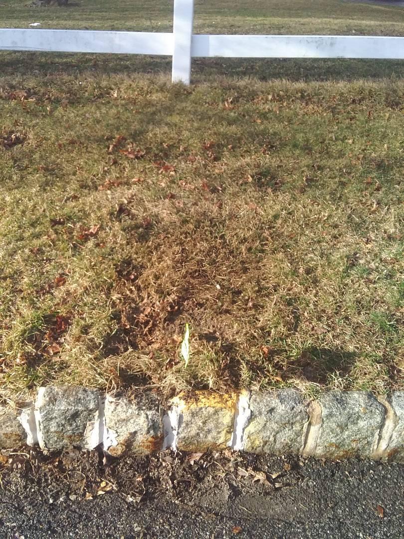Chester, NJ - Fixed broken sprinkler heads