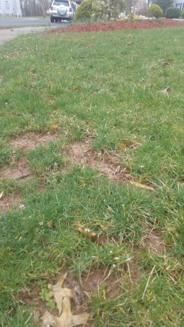 Measure property for fertilizer and weed control