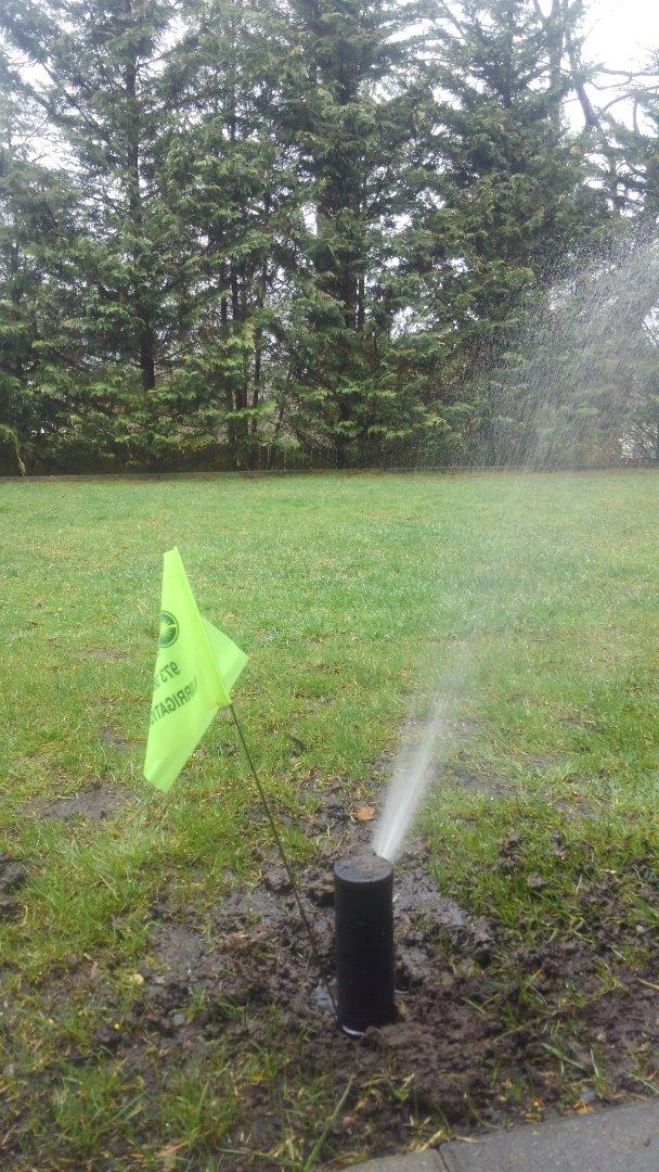 Totowa, NJ - Repair sprinkler head