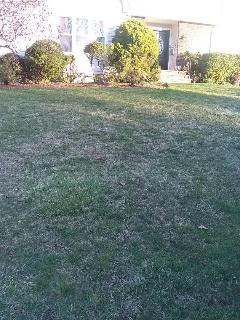 West Orange, NJ - Early morning fertilization application; Lawn Care