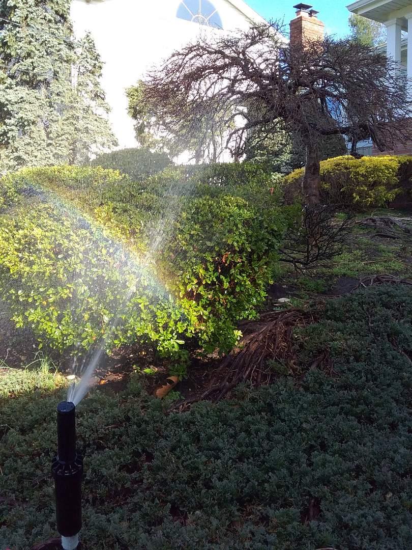 West Orange, NJ - Sprinkler system turn on!!! =)
