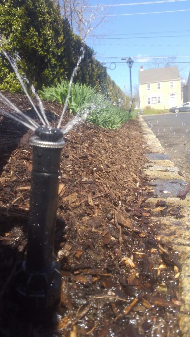 Gladstone, NJ - Replace sprinkler head
