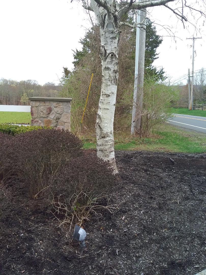 Gladstone, NJ - Landscape lights complete service and repair!!! =)