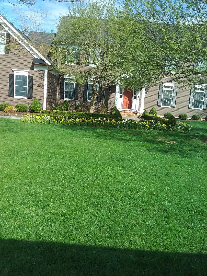 Gladstone, NJ - Fertilization, lime, mosquito control, yard defense application in the works; Lawn Care Services!