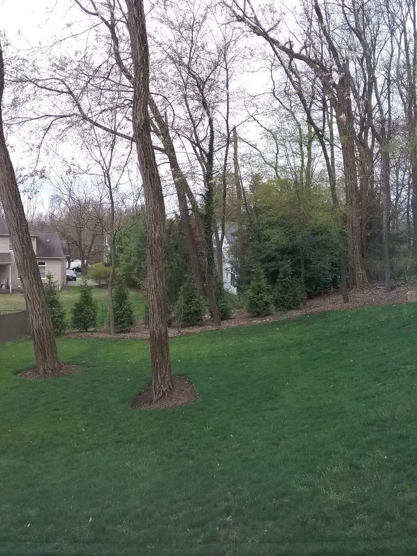 Gladstone, NJ - Sprinkler system start up!!! =)