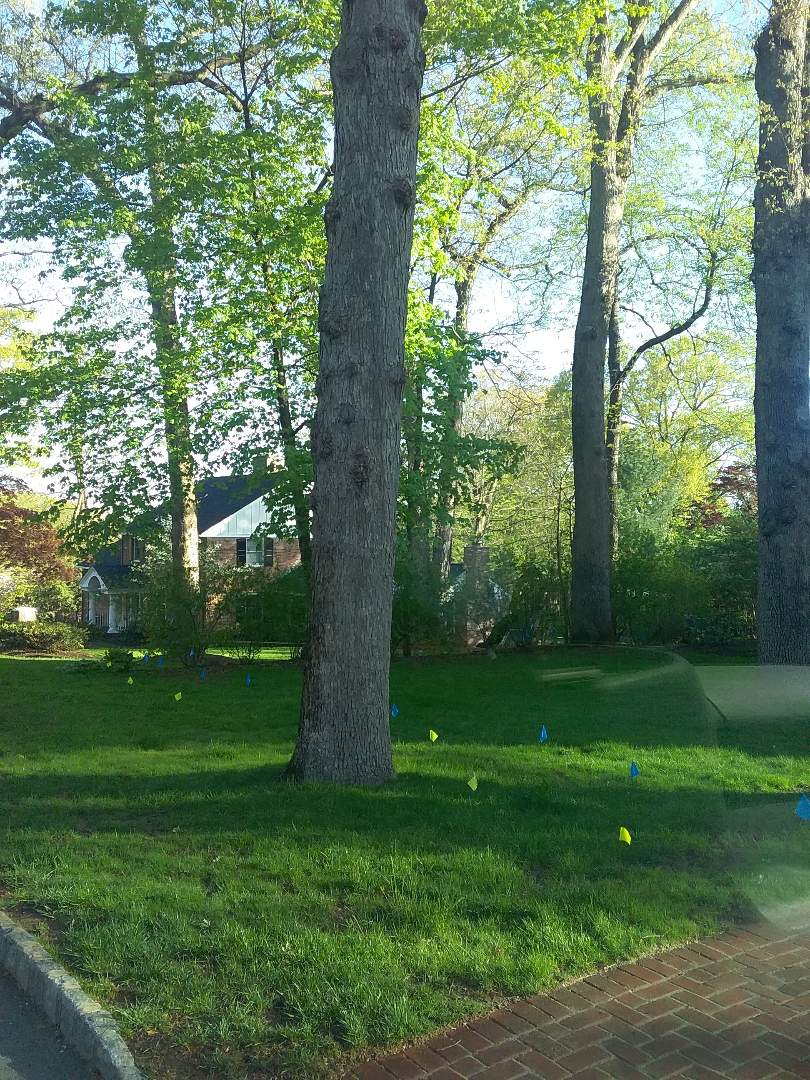 Washington Township, NJ - Applying granulated fertilizer, lime application, and treating for weeds for homeowners 7 application lawn care program!!! =)
