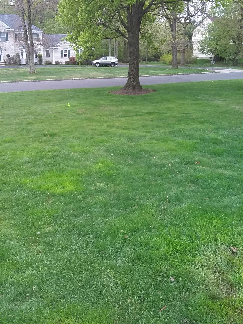 Wharton, NJ - Sprinkler start up and service!!! =)