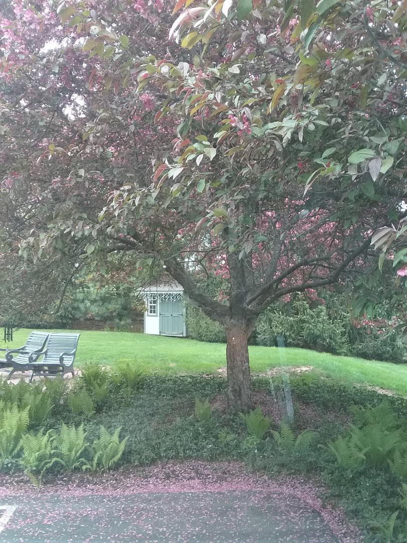 Gladstone, NJ - Started irrigation system and fixed broken sprinkler heads
