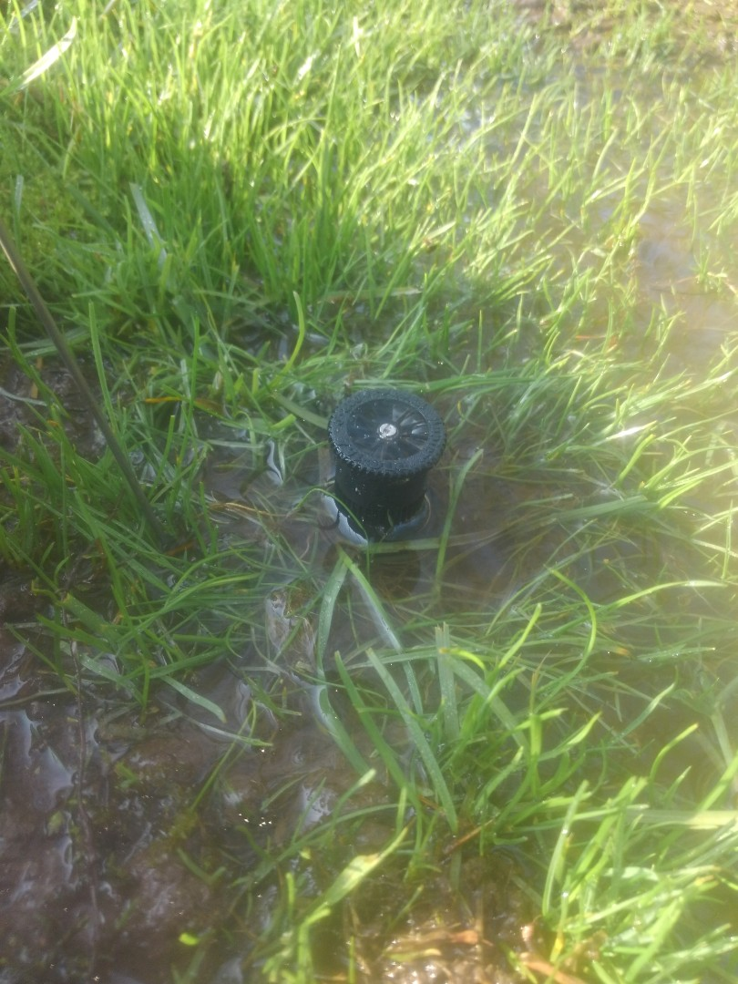 Madison, NJ - Check through sprinkler system. Replace head not going down