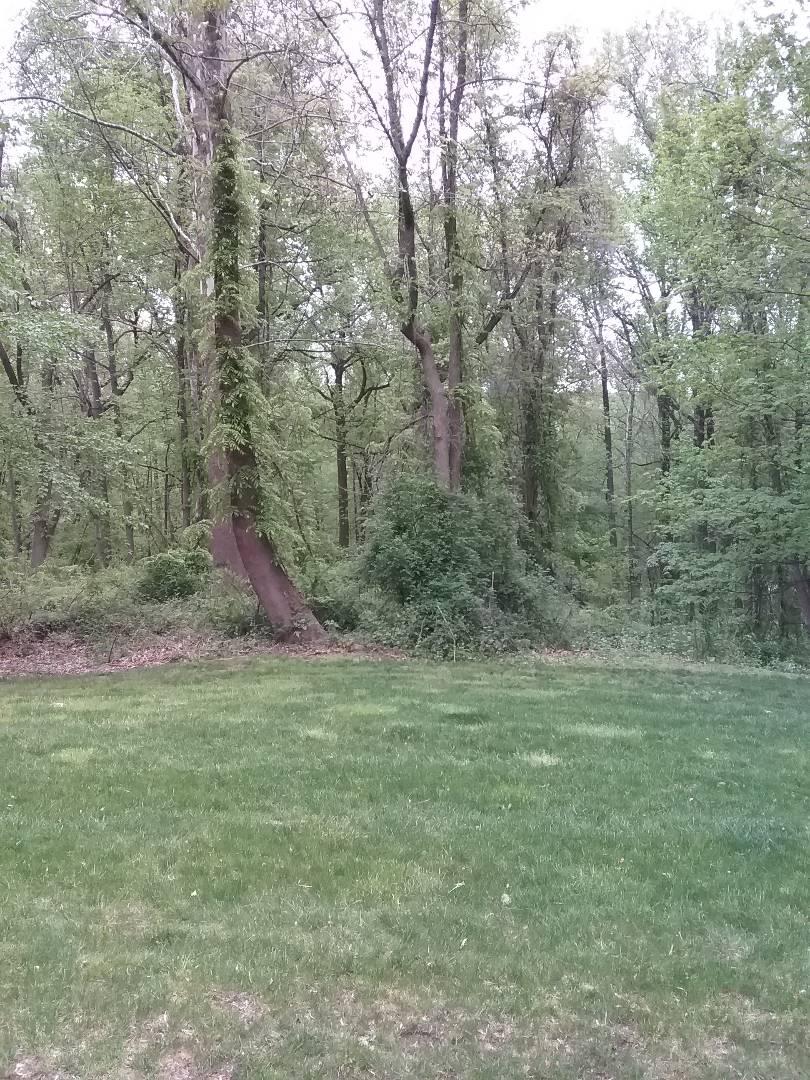Mendham, NJ - Applying granular fertilizer for a guaranteed green lawn!!! =)